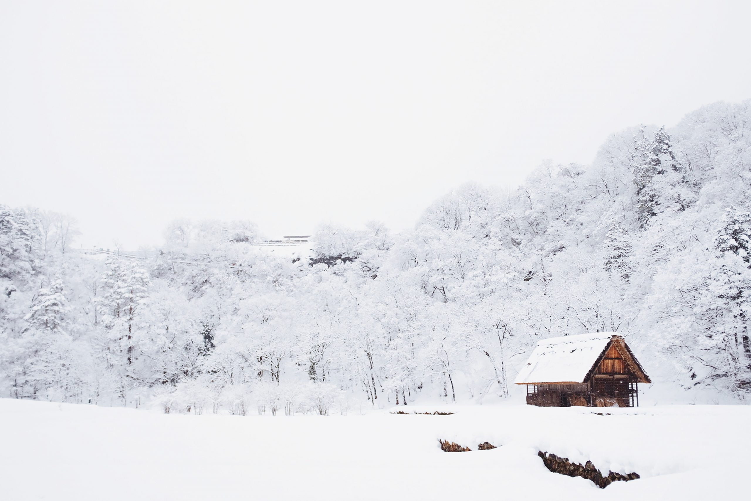 21 artículos para almacenar en invierno 1